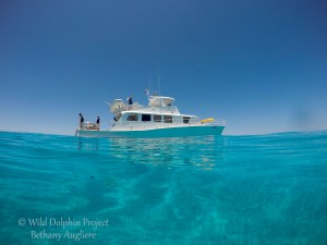 R/V Stenella in the Bahamas